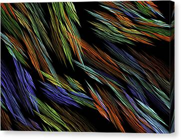 Computer Generated Art Fractal Flame Abstract Digital Image  Canvas Print by Keith Webber Jr