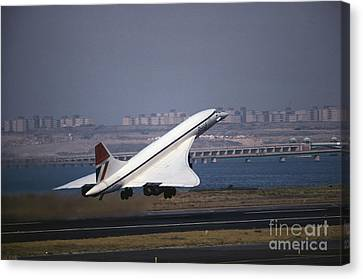 Concorde Canvas Print by Tim Holt