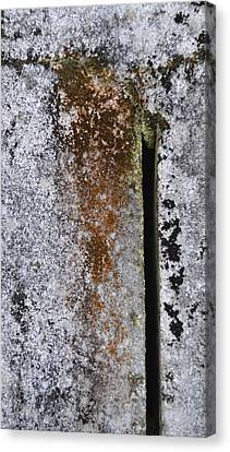 Concrete Abstract - Natures Beauty Canvas Print