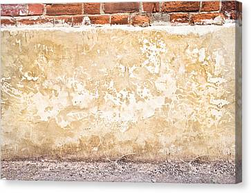 Concrete Wall Canvas Print by Tom Gowanlock