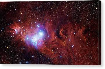 Star Evolution Canvas Print - Cone Nebula And Christmas Tree Cluster by Robert Gendler