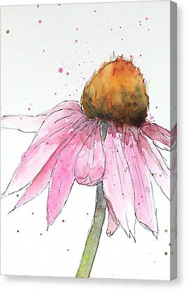 Coneflower 1 Canvas Print