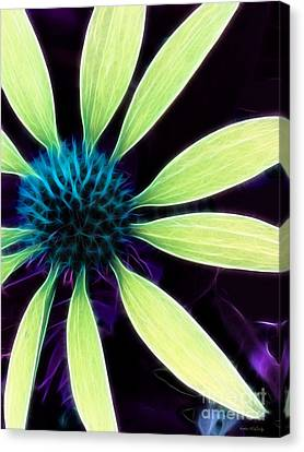 Coneflower Lime Abstract Canvas Print by Kathie McCurdy