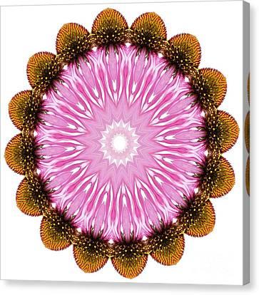 Coneflower Mandala Canvas Print