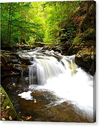 Marvelous View Canvas Print - Conestoga Falls by Frozen in Time Fine Art Photography
