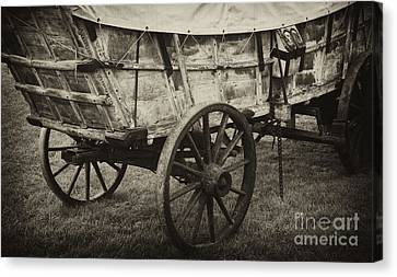 Conestoga Wagon Canvas Print by Paul W Faust -  Impressions of Light