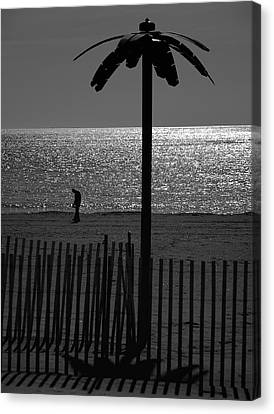 Coney Island 1 Canvas Print by Steven Richman