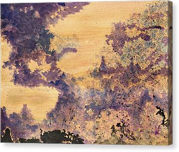 Conflict And Harmony Canvas Print