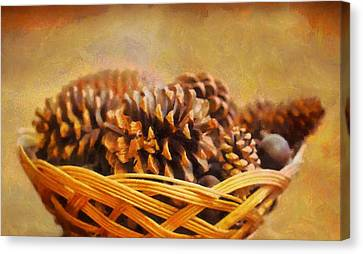 Conifer Cone Basket Canvas Print by Dan Sproul