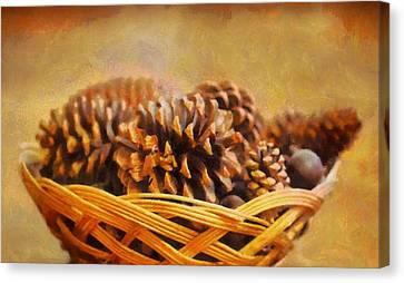 Conifer Cone Basket Canvas Print
