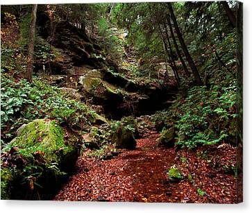 Canvas Print featuring the photograph Conkles Hollow Gorge by Haren Images- Kriss Haren