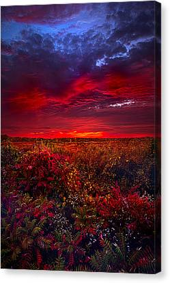 Picnic Table Canvas Print - Connecting by Phil Koch