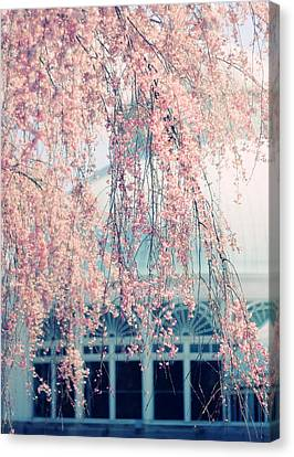 Conservatory  In Spring Canvas Print