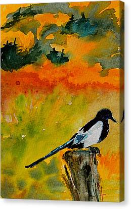 Consider Canvas Print by Beverley Harper Tinsley