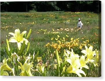Consider The Lilies Of The Field Canvas Print by Jean Hall