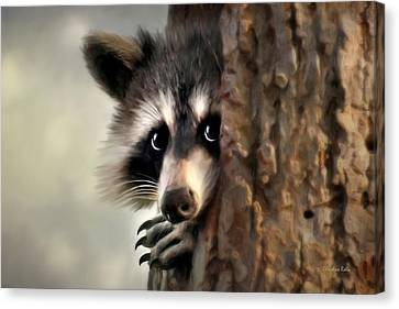Conspicuous Bandit Canvas Print by Christina Rollo