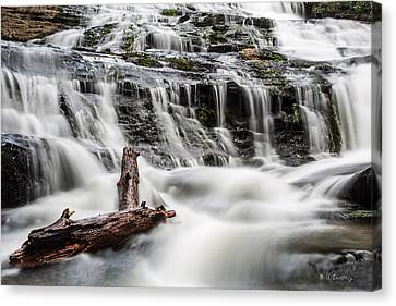 Constant Flow Canvas Print by Bill Cantey