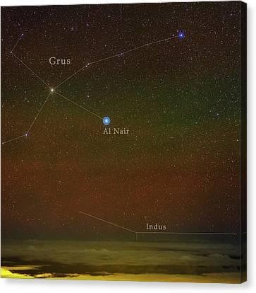 Constellation Grus Canvas Print