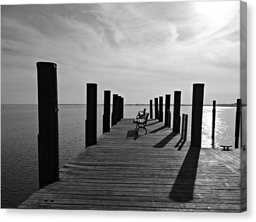Contemplating The Chesapeake Canvas Print