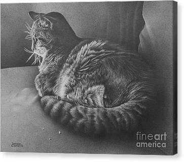 Canvas Print featuring the drawing Contentment by Pamela Clements