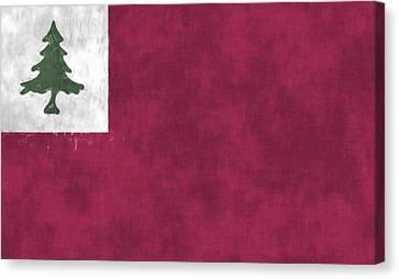 Continental Flag Canvas Print