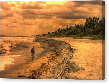 Soul Search Canvas Print by Dennis Baswell