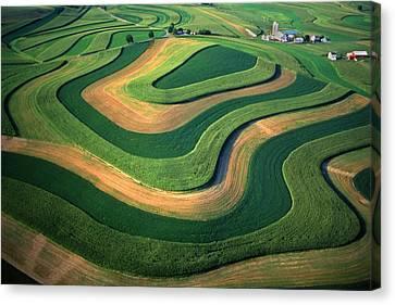 Contour Farm Art Aerial  Canvas Print by Blair Seitz