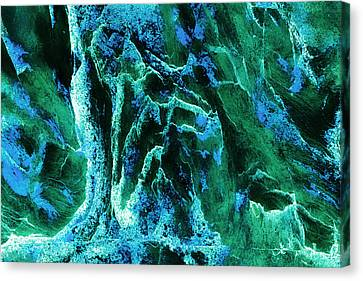 Contours 081 Abstract Canvas Print by Natalie Kinnear
