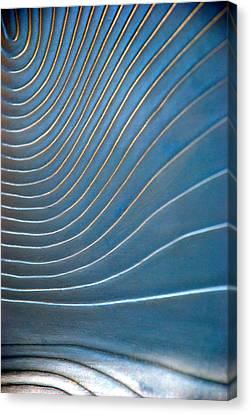 Contours 1 Canvas Print