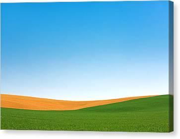 Contour Farming Canvas Print - Contours by Todd Klassy