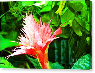 Spiked Pink Delight  Canvas Print by Luther Fine Art