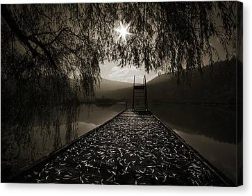 Contre Jour Canvas Print