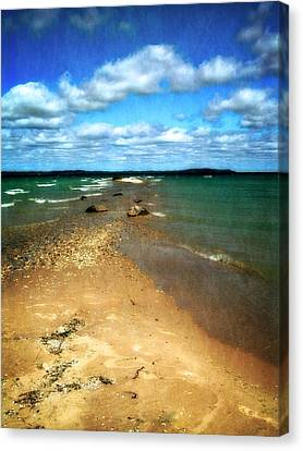 Convergence Canvas Print by Michelle Calkins