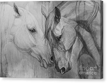 Drawing Canvas Print - Conversation I by Silvana Gabudean Dobre