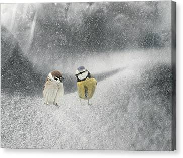 Conversation In The Snow Canvas Print
