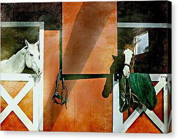 Conversations Canvas Print by Diana Angstadt