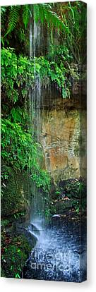 Cool And Refreshing Canvas Print by Kaye Menner