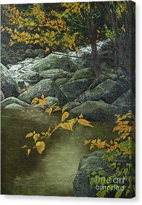 Cool And Shady Canvas Print