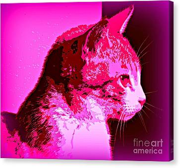 Cool Cat Canvas Print by Clare Bevan