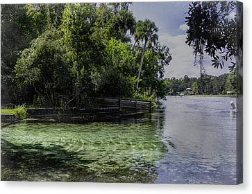 Dunnellon Canvas Print - Cool Clear Water by Judy Hall-Folde