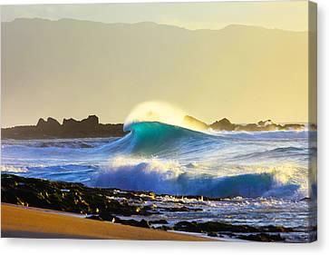 Cool Curl Canvas Print by Sean Davey