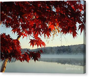 Cool Red Fall Morning Canvas Print