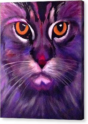 Canvas Print - Cool Maine Coon by Bill Manson