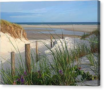 Cool Of Morning Canvas Print by Dianne Cowen