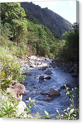 Canvas Print featuring the photograph Cool Stream by Sheila Byers