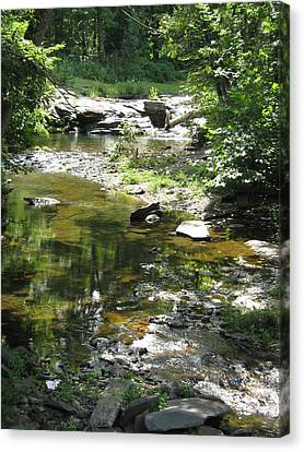 Canvas Print featuring the photograph Cool Waters by Ellen Levinson