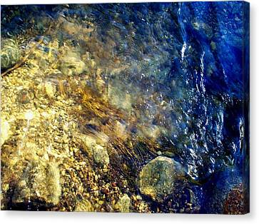 Cool Waters...of The Rifle River Canvas Print by Daniel Thompson