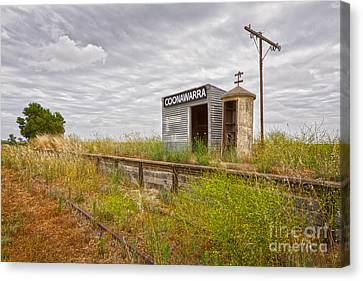 Coonawarra Station South Australia Canvas Print by Colin and Linda McKie