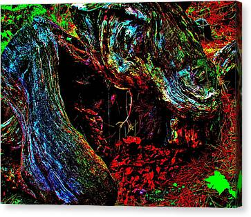 Coos Canyon 229 Canvas Print by George Ramos