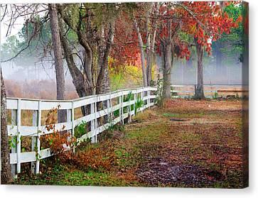Coosaw Horse Fence Canvas Print by Scott Hansen
